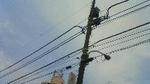 電線200804031503000